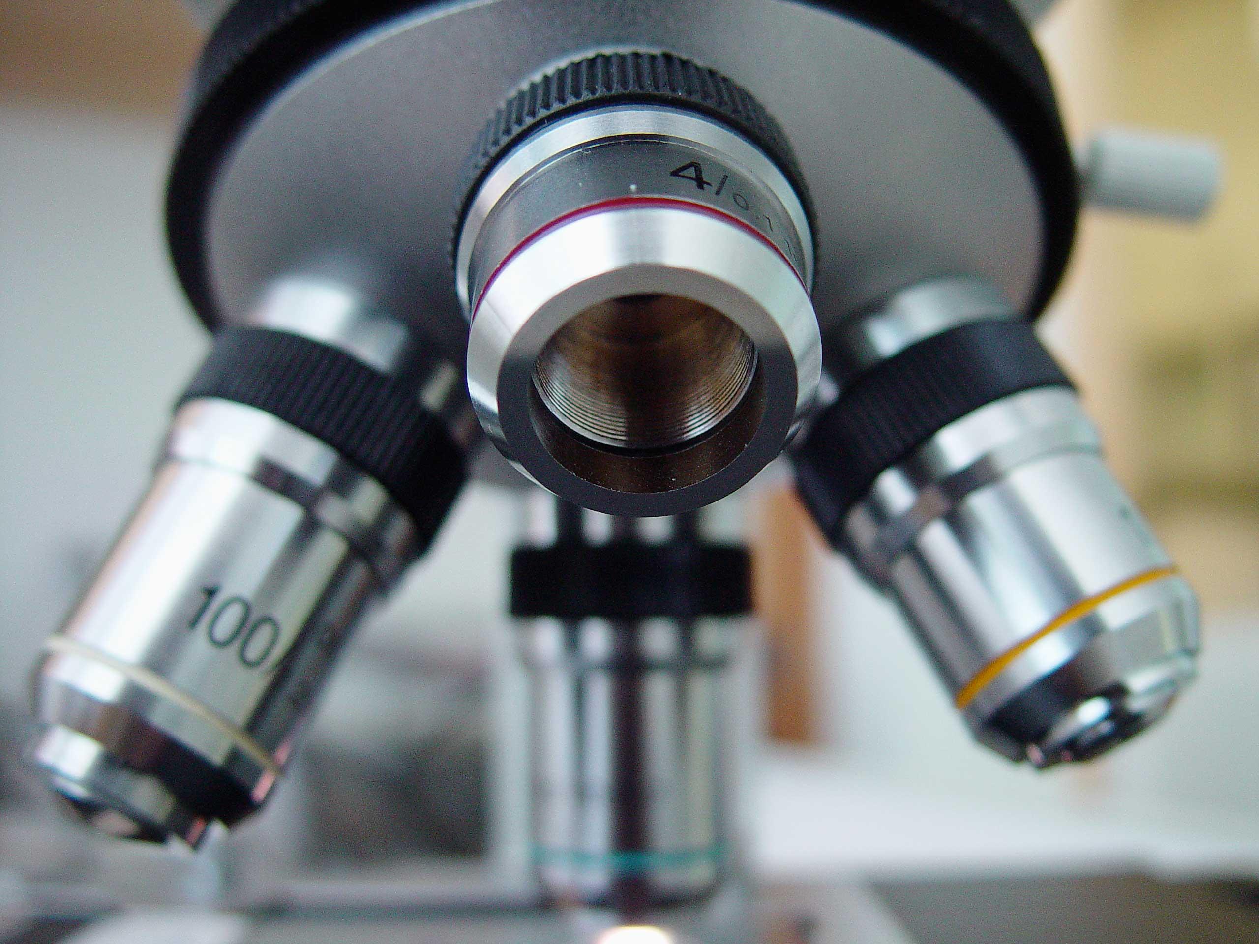 Microscopic Hair Comparison
