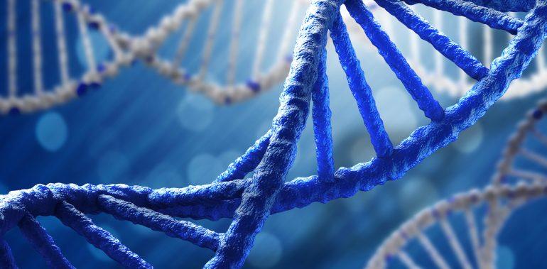Dna Forensic Science Junk Science Hair Analysis Cip